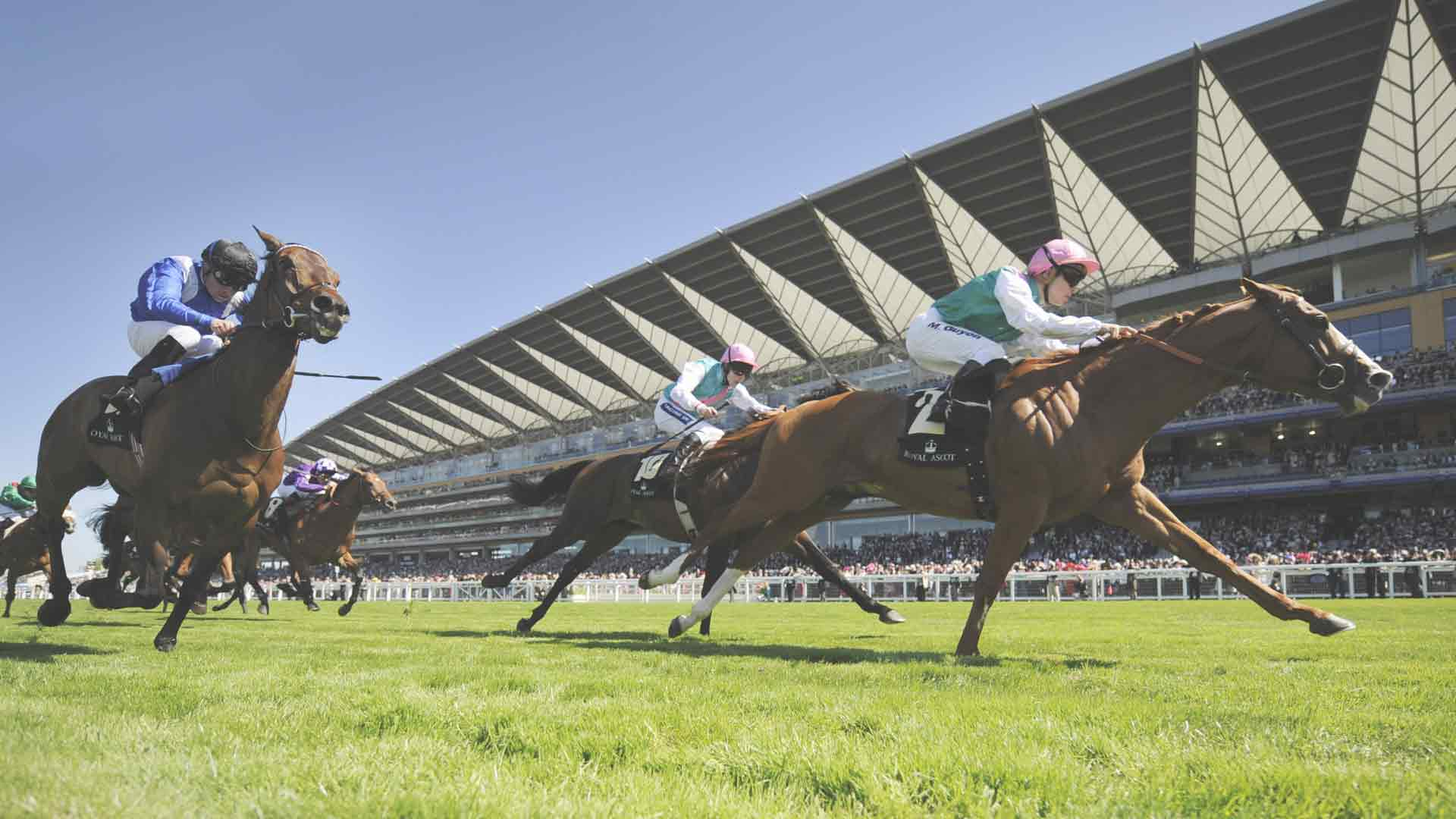 Royal Ascot local attractions