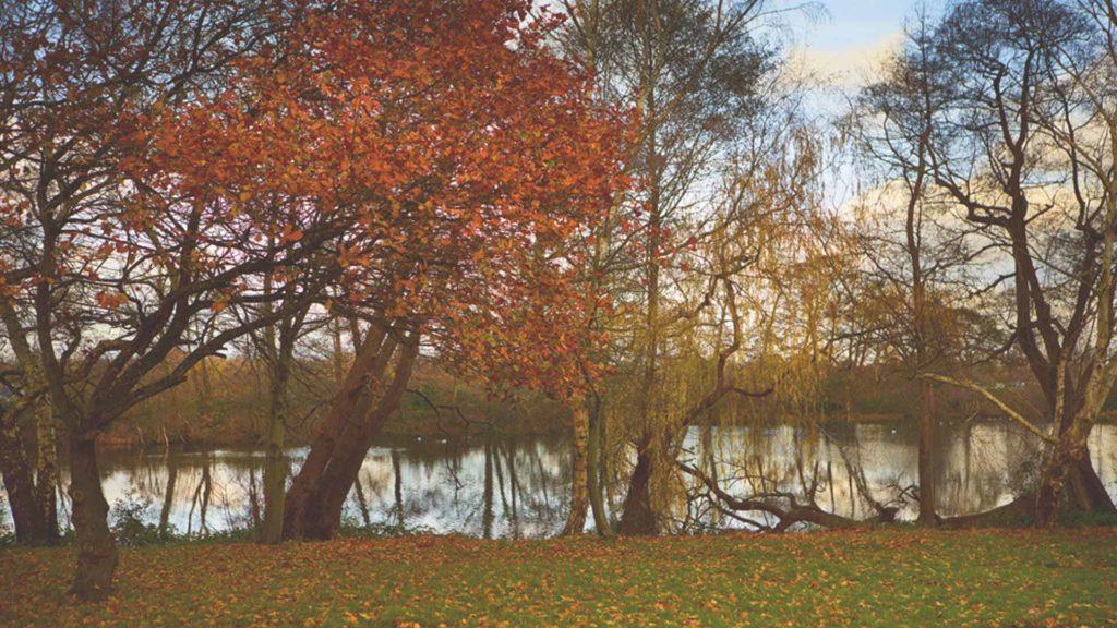 Autumn at Oatlands Park Hotel